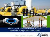 India City Gas Distribution Market Forecast and Opportunities, 2030