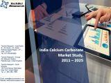 India Calcium Carbonate Market Study,